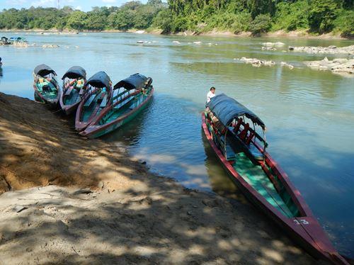 Mexique Palenque Claironyva Yaxchilan