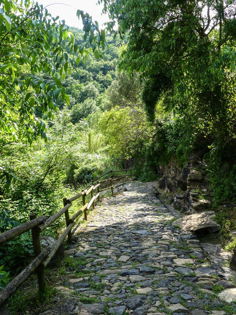 Claironyva Catalogne Garrotxa Castellfollit de la Roca