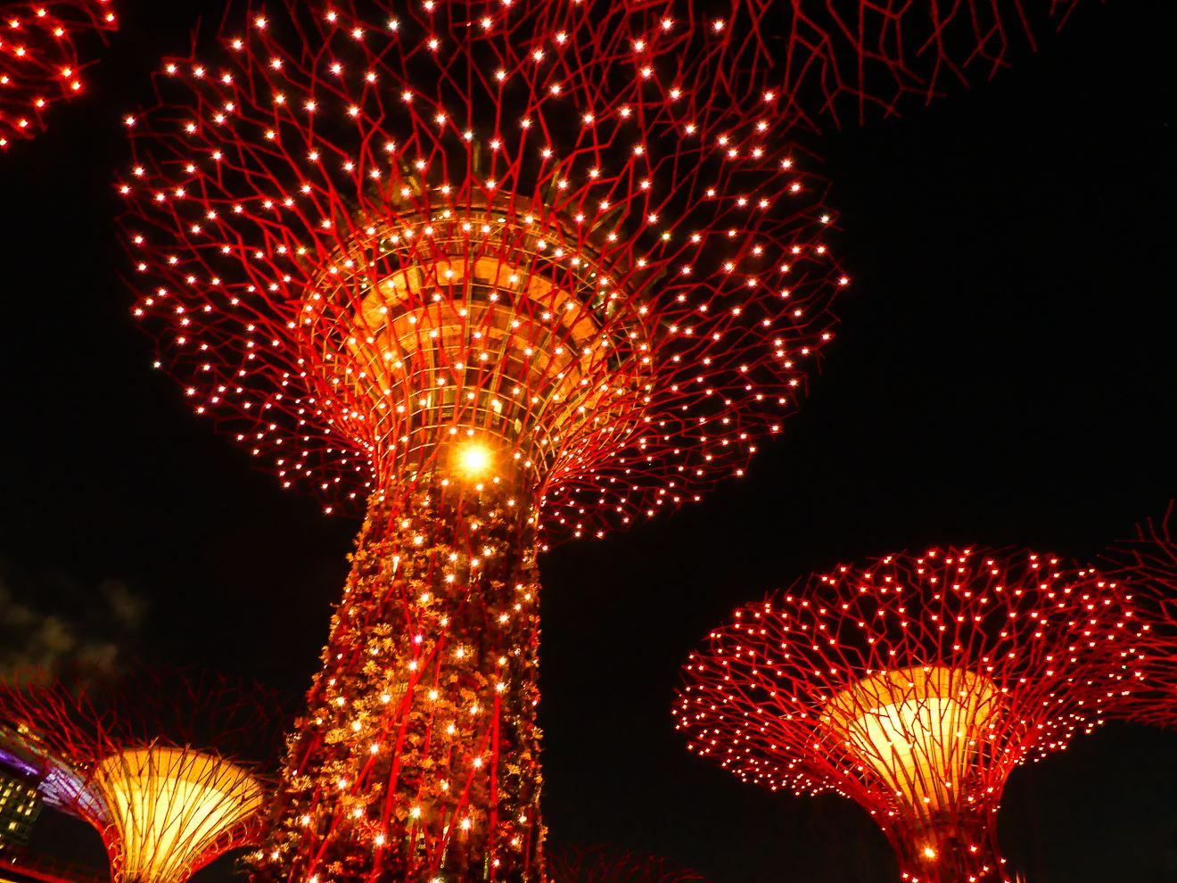 Singapour Super Trees - Gardens by the Bay