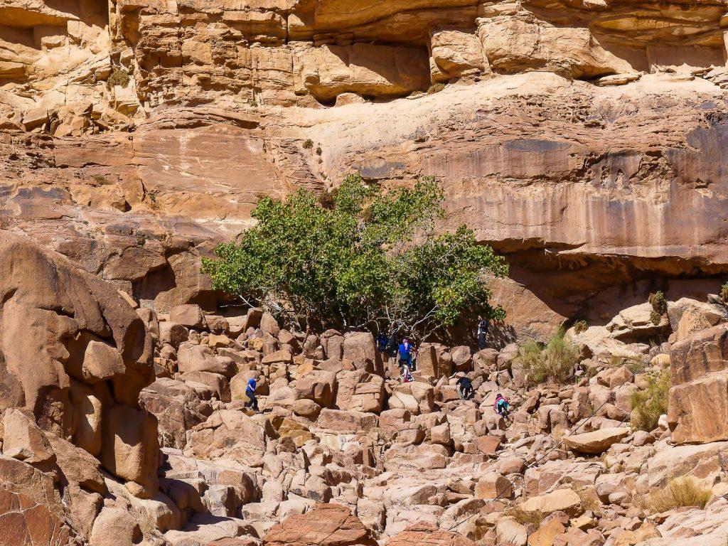 Wadi Rum - arrêt 1 - la source